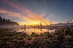 Sonnenaufgang Wengermoor